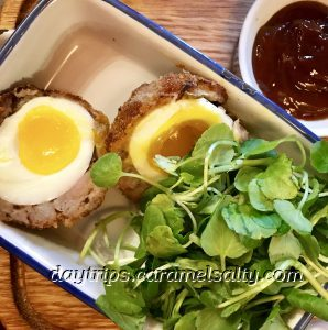 Scotch Egg at Audley