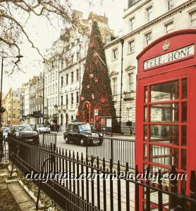 Annabel's Is Decorated With the Largest Christmas Tree in London