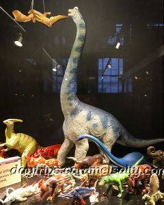 Dinosaurs at Grant's Zoology Museum