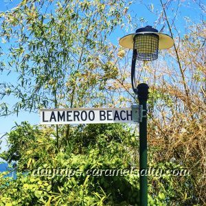 A Sign for Lameroo Beach