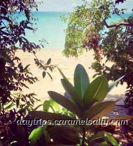 Views as I Walk Along Darwin's Esplanade