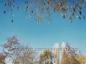 Blue Skies Over Hertford