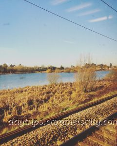 View from the train of the marshy Lea Valley