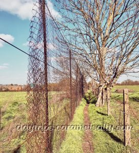 The Fenced in Path to the Industrial Estate
