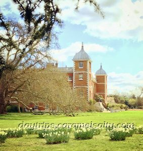 Daffodils at Osterley House