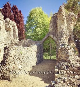The Ruins Of Wolvesey Castle, Winchester