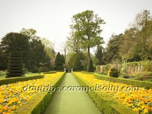 The Long Garden At Cliveden