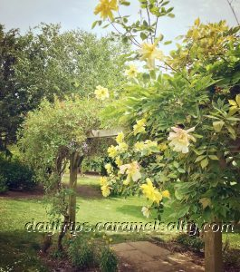 The Gardens At Prittlewell Manor
