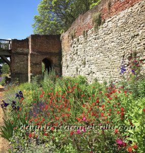 The Borders In The Gardens Of Eltham Palace