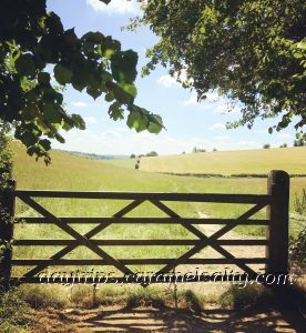 Point 5 On the Purple Route - A Gate Into A Field