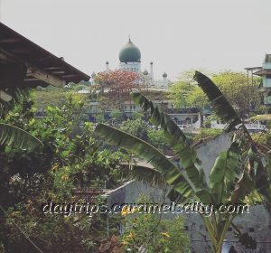 View Of Mosque from Kampong Jugoyodan