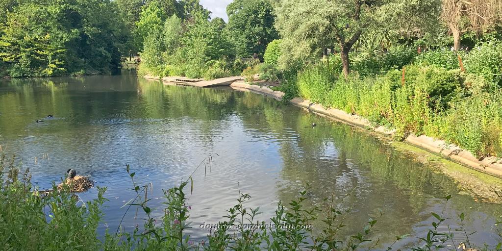 The Duck Pond at Ravenscourt Park