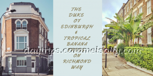 The Duke of Edinburgh and Banana Trees