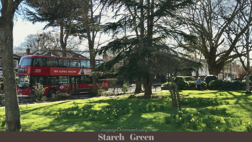 Starch Green in Spring