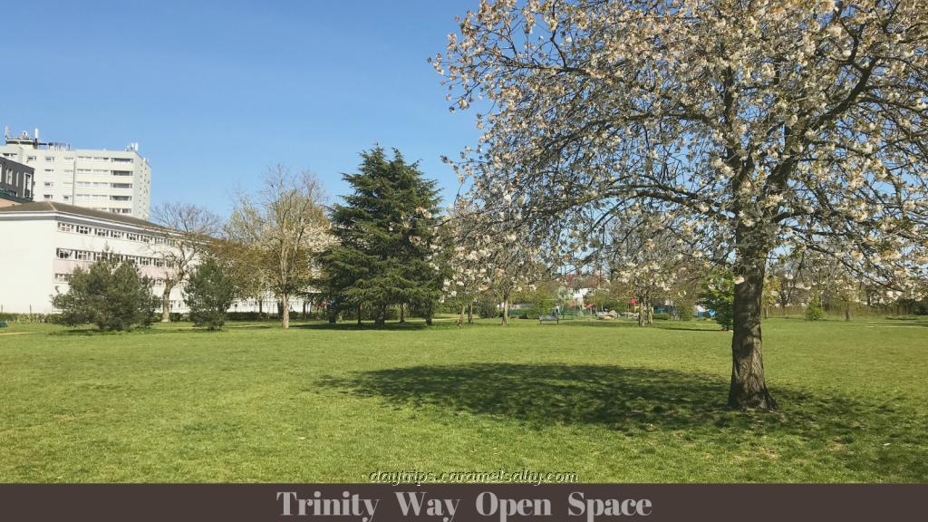 Trinity Way Open Space
